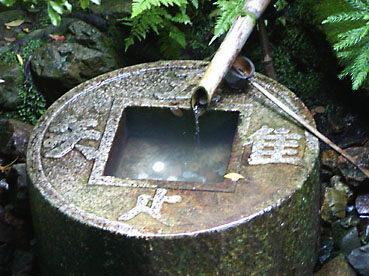 So net blog for Fontaine de jardin truffaut